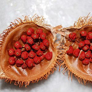 Annatto Tocotrienols