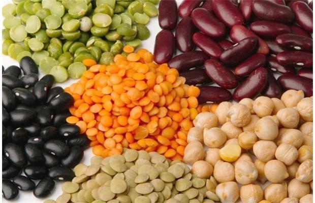Beans High Fiber